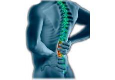 ДИСКУС ХЕРНИЈА 25% Попуст на 10 третмани за  лекување на Дискус Хернија. 1 третман содржи (медицинска масажа, електротерапија, електроакопунктура, вежби, киропрактика, термотерапија, солукс ламба )